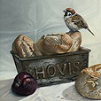 Tree Sparrow and plum  |  h.25cm w.30.5cm  |  Pastel on board